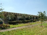 AMSI warehouse